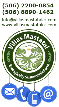 Contactenos-villas-mastatal